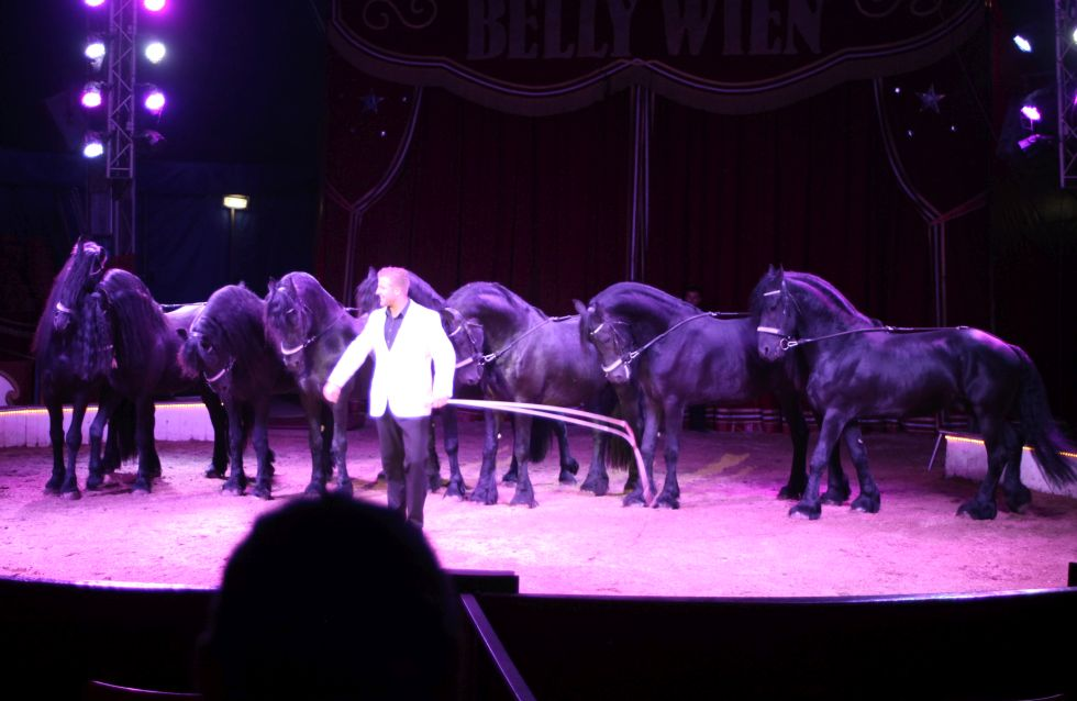 Circus Belly Wien 2016 in Kalkar